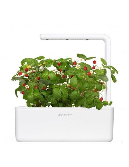 Smart garden CLICK & GROW 3 pots EMSA